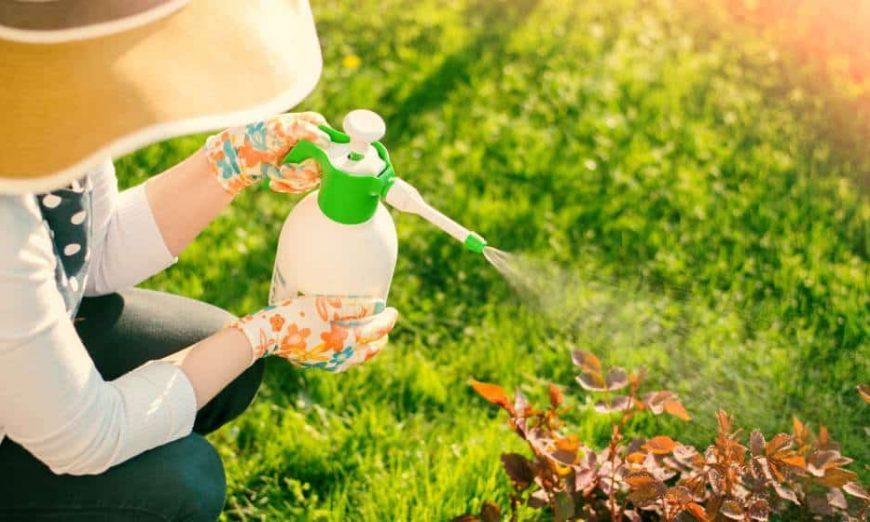 Organski pesticidi