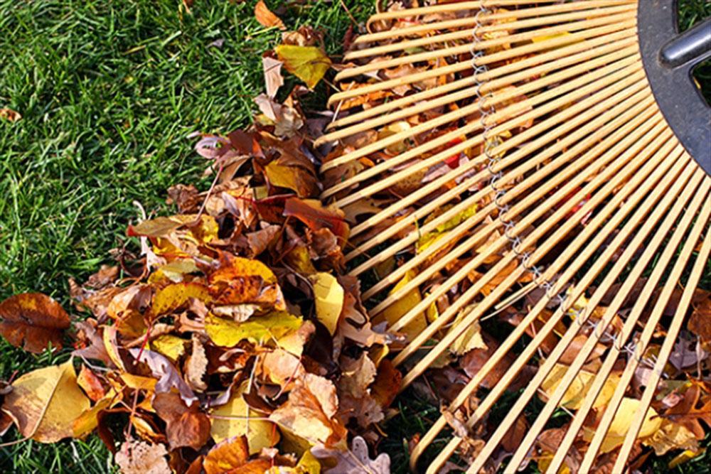 lišće, jesen
