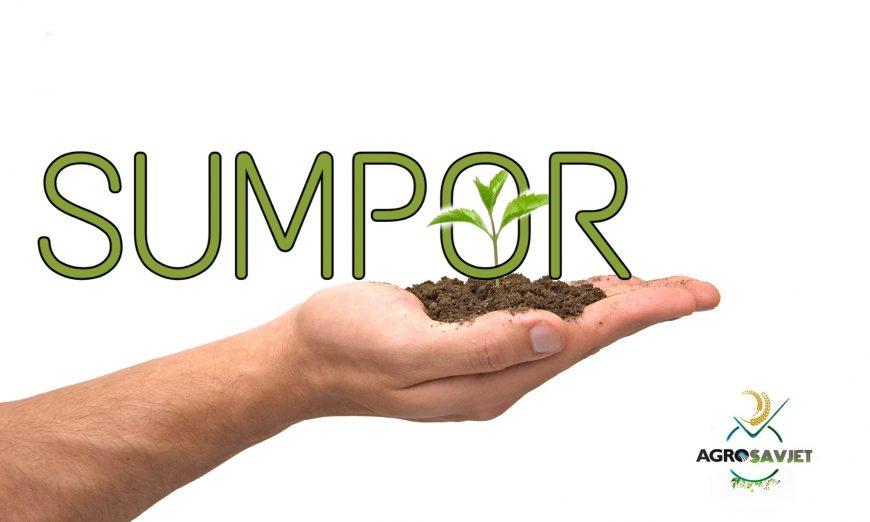 Sumpor