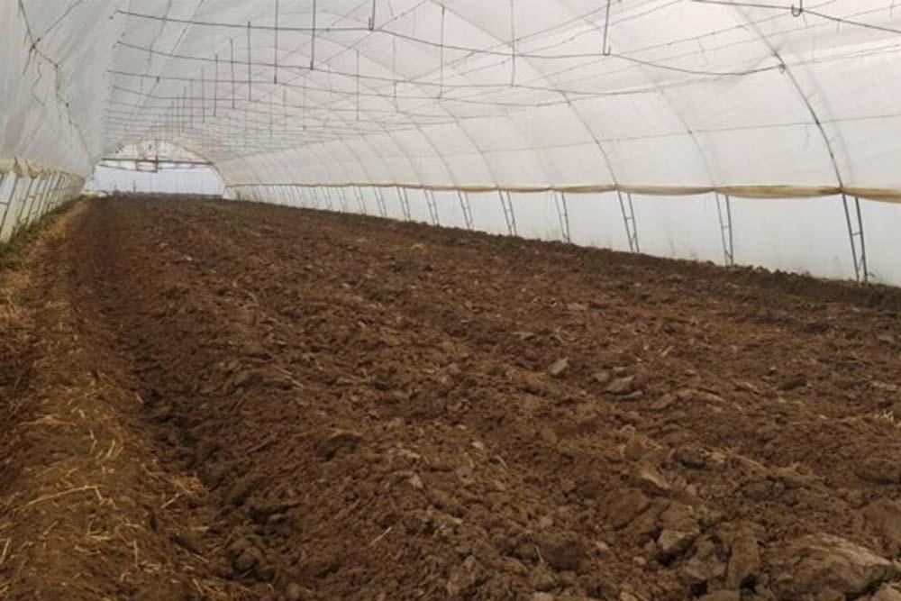 Dezinfekcija zemljišta