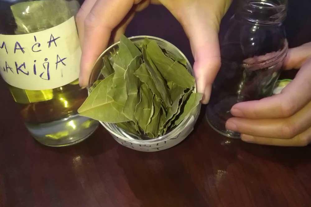 Lovorov list u rakiji