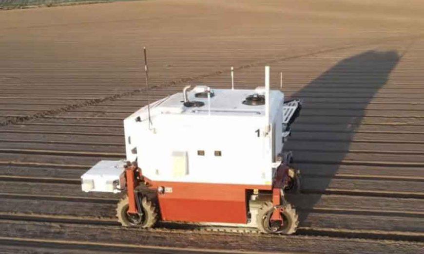 Američki robot uništava 100.000 biljaka korova na sat