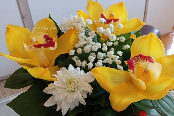 Poklanjanje cvijeća