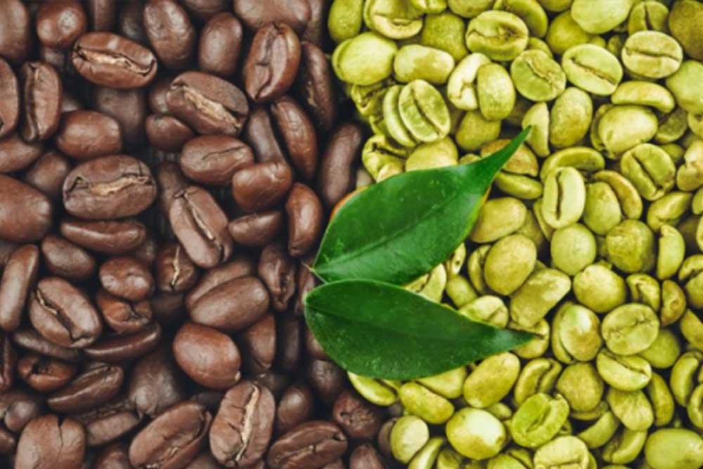 Ljekovito djelovanje kafe