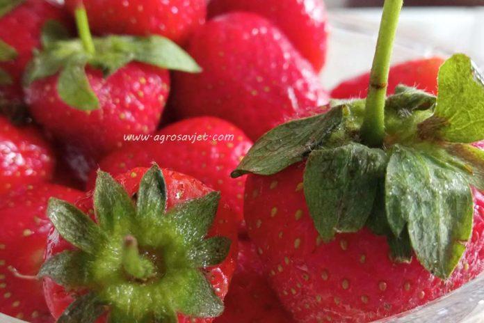Peteljke od jagoda