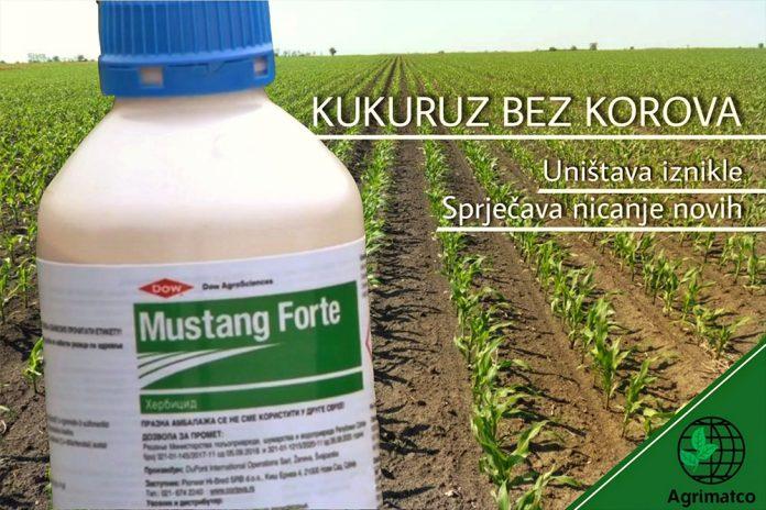 Herbicid Mustang Forte