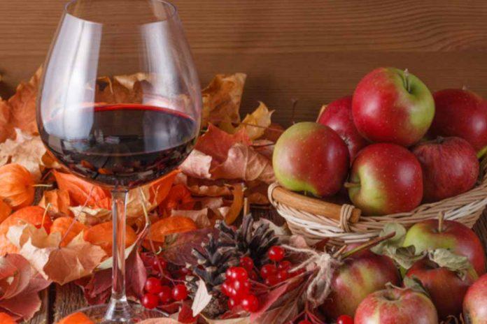 biljna vina